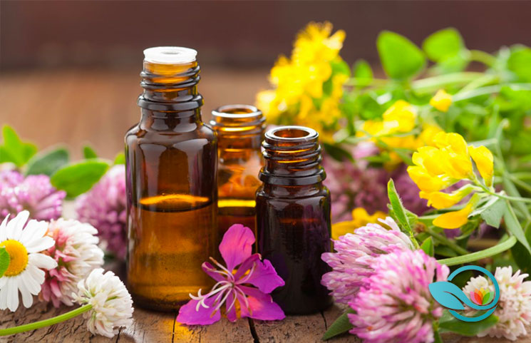 Essential Oils Ultimate 2019 Guide