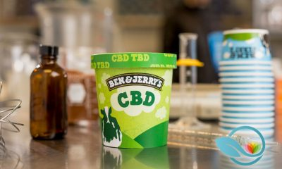 Ben & Jerry's Wants to Add CBD to Your Favorite Comfort Food