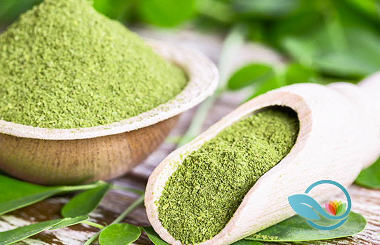 Best Moringa Powder Supplements of 2019