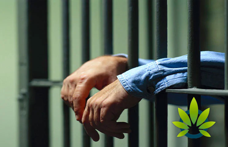 Montgomery-Man-Sentenced-to-Four-Years-in-Jail-After-Acquiring-42-Pounds-of-Cannabis-Edibles-for-Cancer-Medication