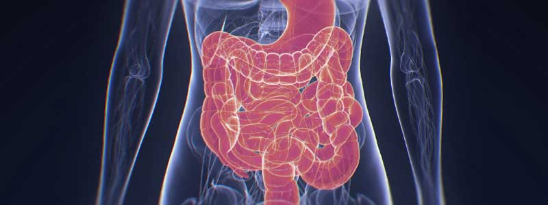 Side-Effects-of-Digestive-Enzymes