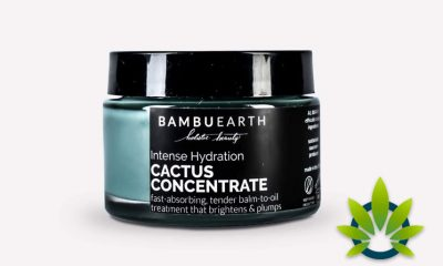 Bambu Earth Intense Hydration Cactus Concentrate