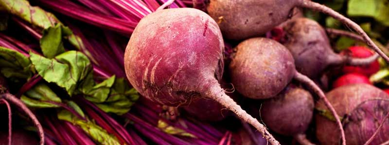 Benefits-of-Beets