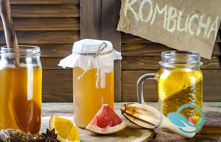 Best-Kombucha-of-2019
