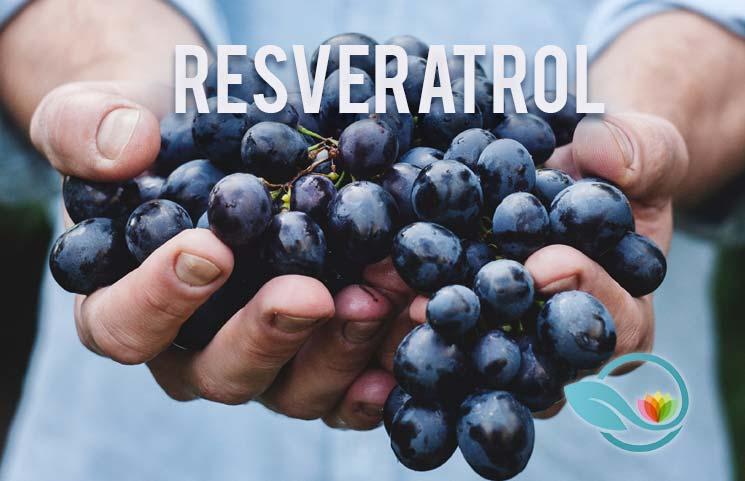 Best-Resveratrol-Supplements-of-2019