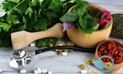 Dr. Oz Claims to Appreciate Medicine Outside of Western Medicinal Practices Since the Beginning