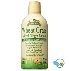 Garden Greens Wheat Grass with Real Ginger Extract