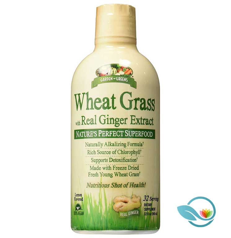 Garden-Greens-Wheat-Grass-with-Real-Ginger-Extract
