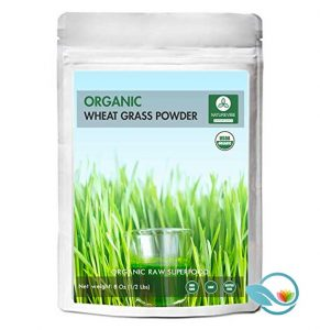 Naturevibe Botanicals Organic Wheat Grass Powder