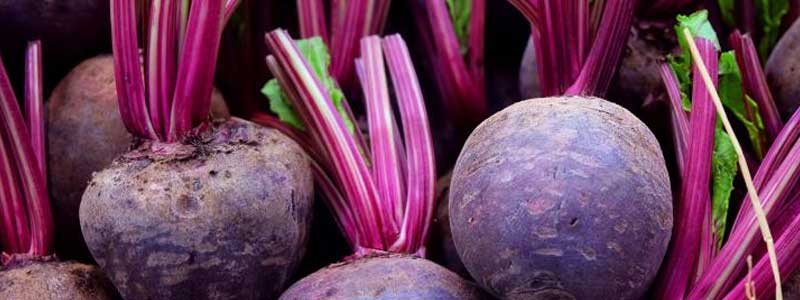Side-Effects-of-Beets