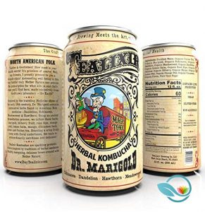 Tealixer Herbal Kombucha Dr. Marigold