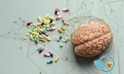 Reviewing The Best Nootropics and Brain-Boosting Smart Drugs of 2019