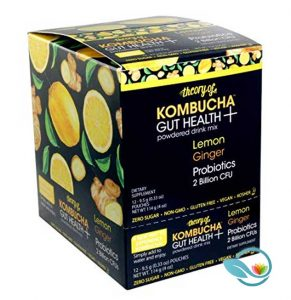 Theory of Kombucha Gut Health Powdered Drink Mix