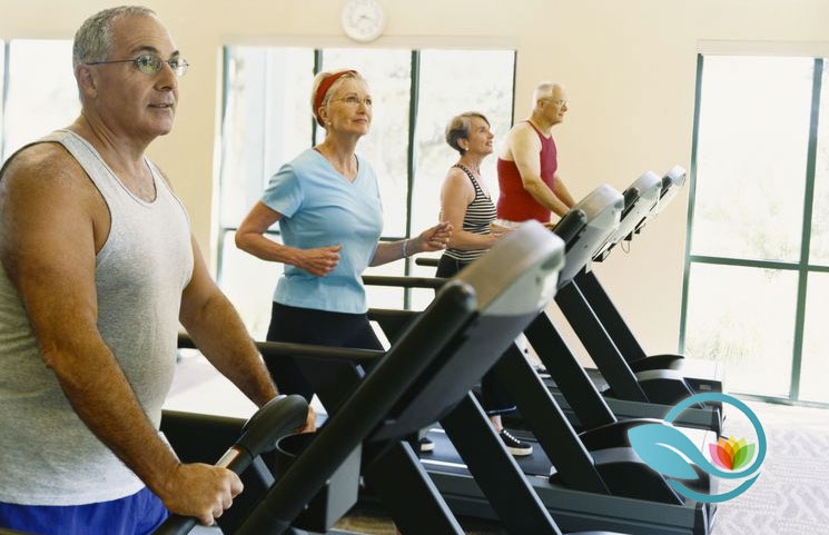 Top 10 Treadmills for Men and Women Over 60 Years Old Doing Physical Exercise Activity