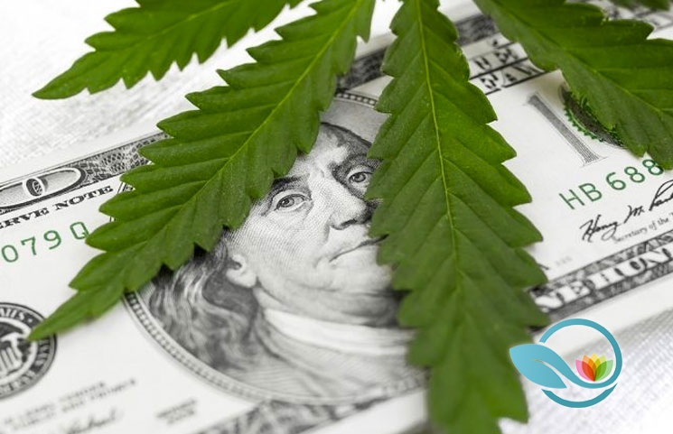Marijuana-Stocks-Investment-Guide-How-to-Buy-Cannabis-Stocks-Strategies