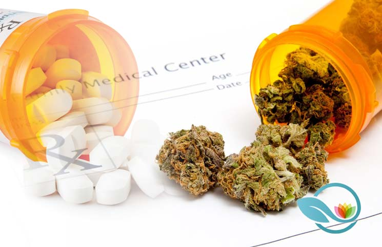 New Study Finds Medical Marijuana is a Viable Opioid Replacement