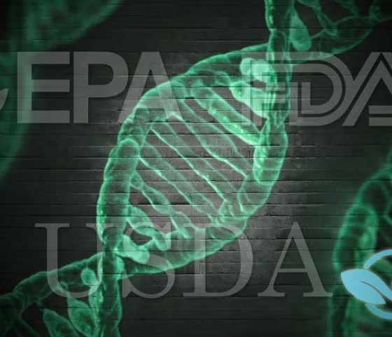 Three US Federal Agencies, FDA, USDA and EPA, Debut Biotechnology Regulation Hub