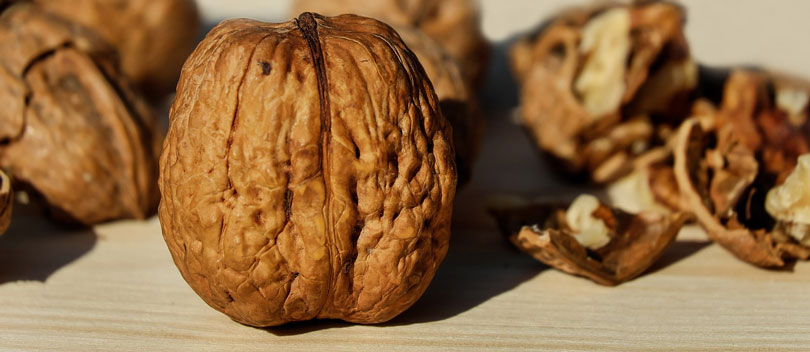 California Walnut Commission Launches Power of 3 Campaign to Promote Omega 3 Benefits