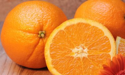 Nobiletin: Orange Juice Molecule Prevents the Obesity-Related Health Problems