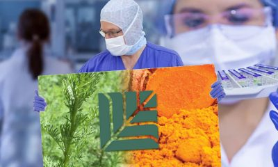 MGC, Micelle Technology Propose Curcumin and Artemisinin-based Treatment ArtemiC for COVID-19 Patients