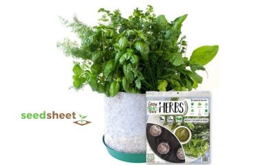 SeedSheet Review: Grow a Fresh, Organic Herb Garden from Home?