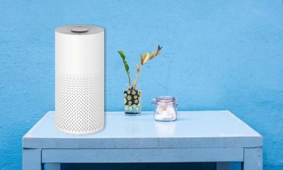 Air Purifiers for Indoor Pollution Take Top Spot as Most Sold Home Appliance in 2020