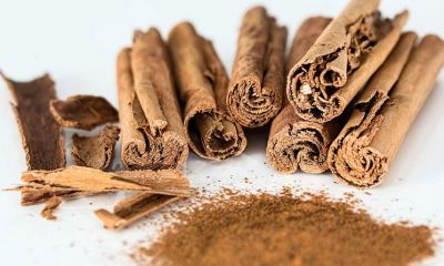 Prediabetic People May Have Their Blood Sugar Levels Reduced by Cinnamon